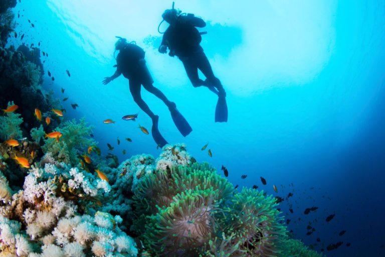 Scuba Belize