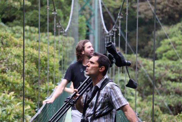 Experience the cloud forest from the top of the forest canopy
