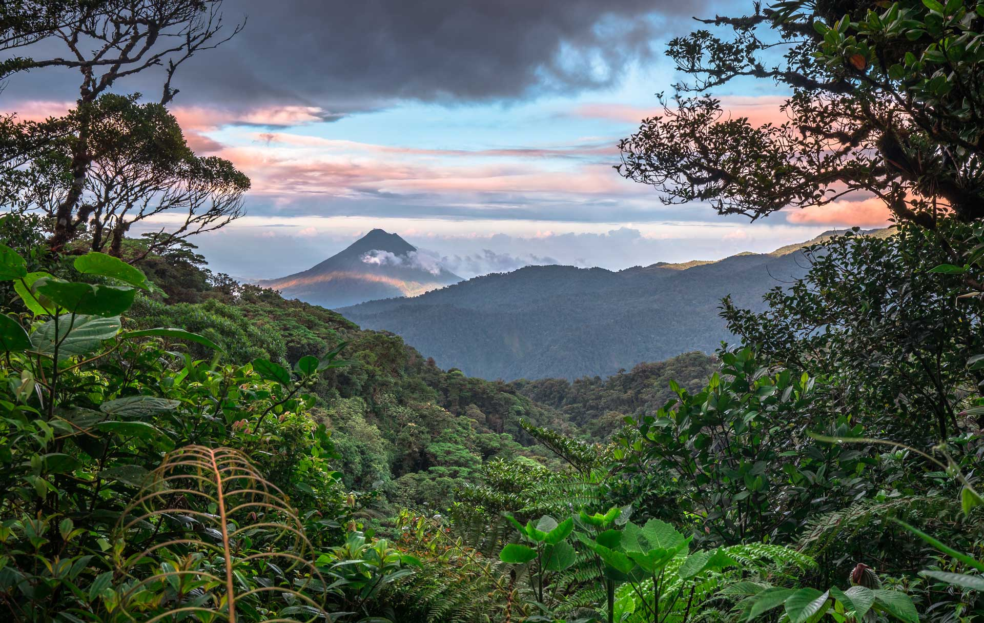 Monteverde Costa Rica Ecotour