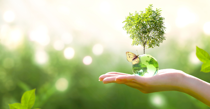 Striving for a Clean Planet