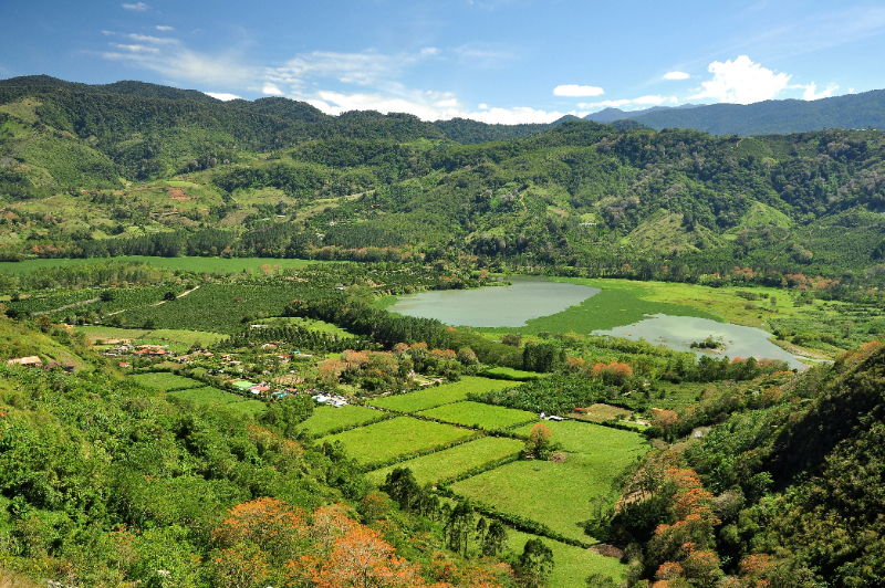 Visit one of Costa Rica's beautiful  Organic Farms