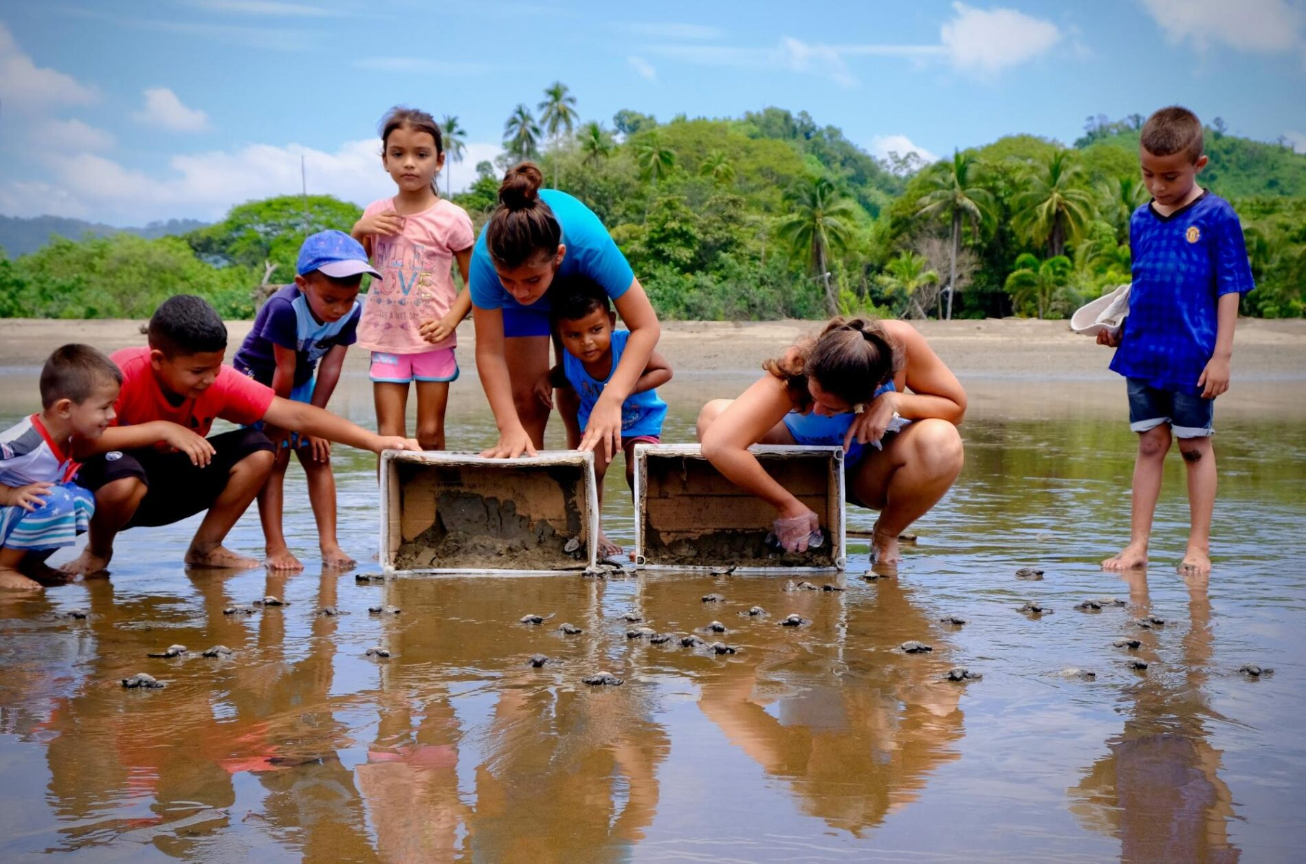 Learning ecology with Sea Turtles in Costa Rica
